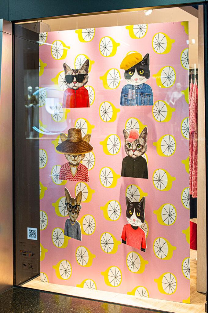soliver moda špica cvjetno mačke paulina jazvić